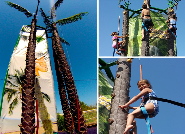 Coconut Climb 25' 3-Station Rockwall